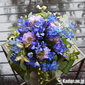 Flower gift sent for Just Because